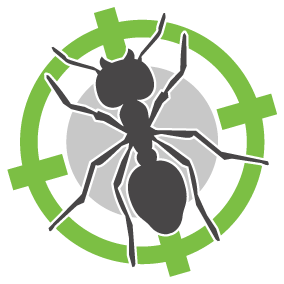 Ant Treatments | Perth | Perth Hills | Envirapest