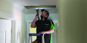 Perth Termite Inspections | Timber Pest Inspections | Envirapest