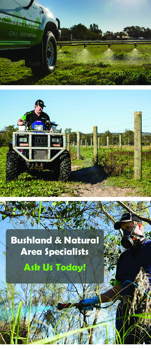 Bushland Spraying | Natural Area Spraying | Envirapest