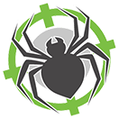 Get rid of spiders in Perth