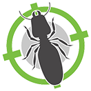 Ant Treatments | Perth | Perth Hills | Envirapest