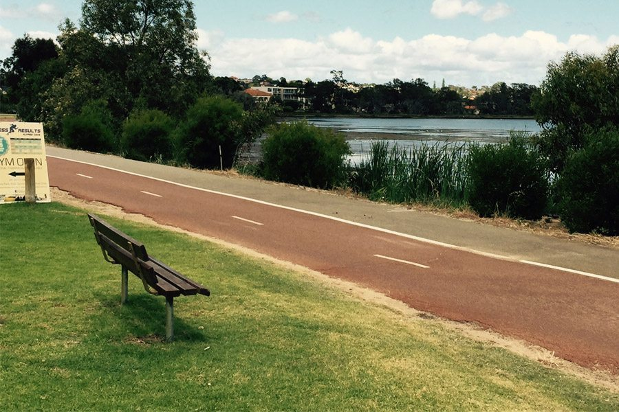 Typha – Taking over the Swan River