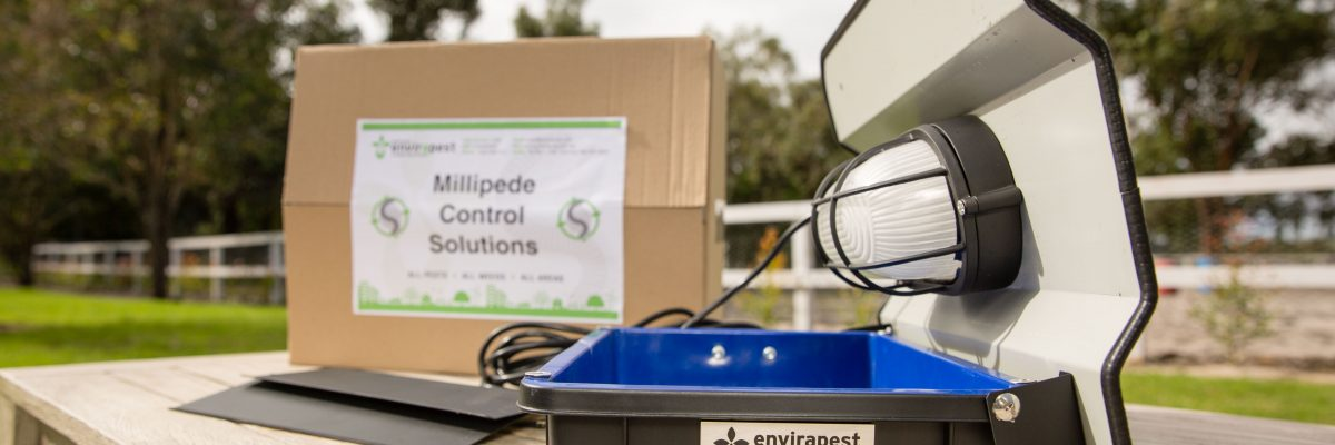 Millipede Light Trap | Perth Pest Control | Envirapest