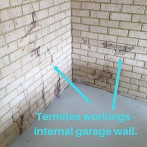 Termites in Garage | Termite Barrier | Envirapest