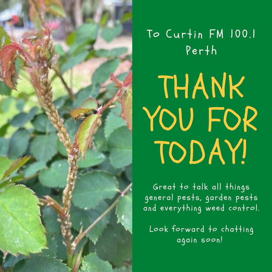 Thank You Curtin FM